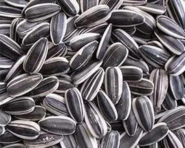 Купить семена гибридов подсолнечника цена