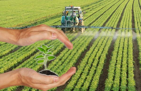 Средства защиты растений - гербициды